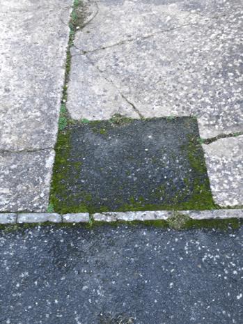 Scared concrete driveway